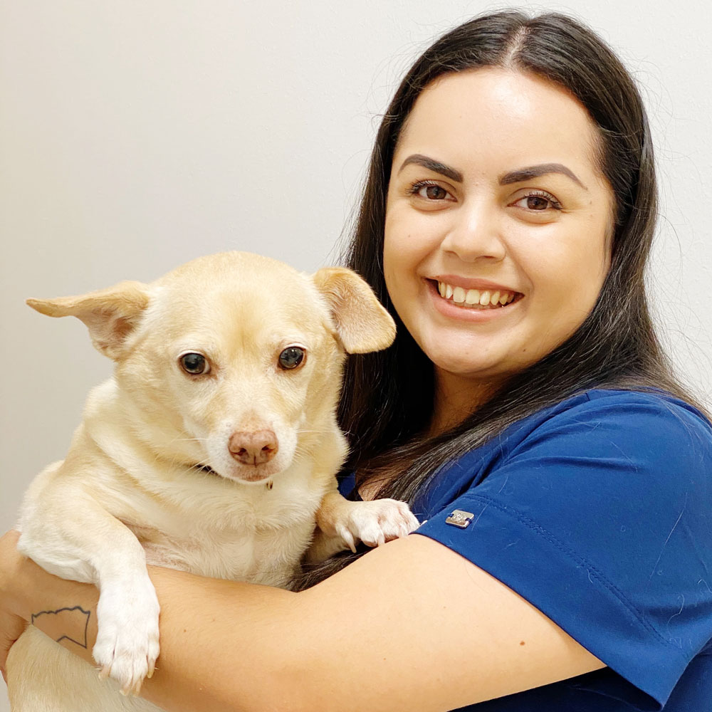 Norel Gonzales, Licensed Veterinary Technician, Animal Hospital of Maple Valley, Maple Valley WA